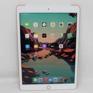 iPad 10.2 inch 2020 WIFI Cellular-25330742VN