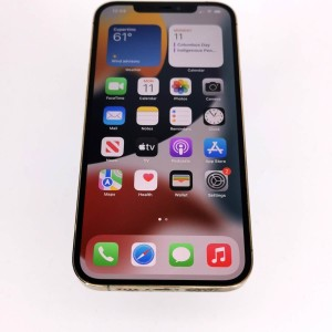 iPhone 12 Pro Max-27594586RV